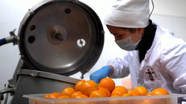 Lavorazione marmellata artigianale di arancia